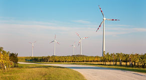 Wind turbine and autumn vineyards Stock Images