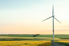 Wind turbine and beautiful fields at sunset. Space for text royalty free stock image