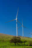 Wind turbine with 3 blades in a field of grass Stock Images