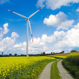 Wind turbine and canola field Royalty Free Stock Photography
