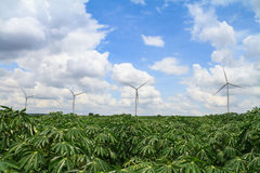 Wind turbine in casava farm Royalty Free Stock Photography