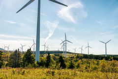 Wind turbine farm over blue sky Stock Image