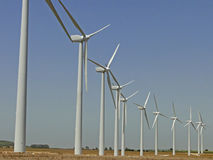 Wind turbine farm. Production line in a wind turbines farm Royalty Free Stock Images