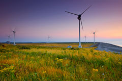 Wind turbine farm with purple sky Royalty Free Stock Photos