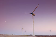 Wind turbine farm with purple sky Royalty Free Stock Photo