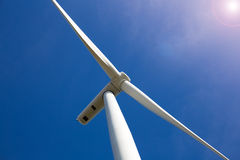 Wind Turbine Farm with Sunlight Royalty Free Stock Images