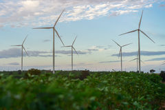 Wind Turbine Farm, Wind Energy Concept. Wind turbine farm. Sustainable development, environment friendly concept. Wind turbine farm give renewable energy Royalty Free Stock Photo