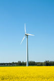 Wind turbine in the farmland Stock Photo