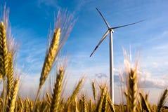 A wind turbine on the field Stock Image