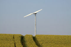 Wind turbine in field. Royalty Free Stock Photography
