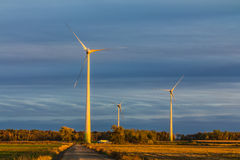 Wind turbine in a field Royalty Free Stock Images