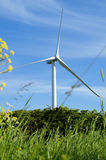 Wind turbine on a field Stock Images