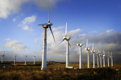 Wind Turbine Field, Hawaii Stock Photo