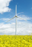 Wind Turbine In Field Of Oil Seed Rape Royalty Free Stock Image