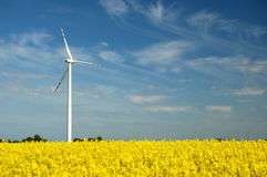 Wind turbine on field of oilseed rape Stock Photos