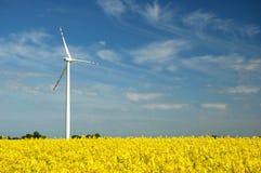 Wind turbine on field of oilseed rape. Wind turbine on yellow field of oilseed rape in the springtime Stock Photos