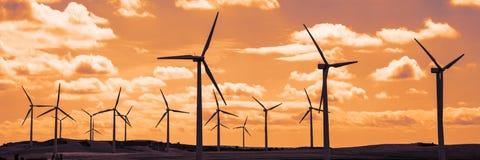 Wind turbine field at sunset, dramatic sky Royalty Free Stock Image