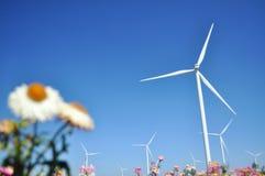 Wind Turbine in the filed. Wind turbine sunshine bluesky  fresh flower filed royalty free stock images