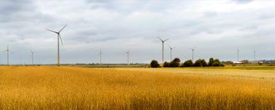 Wind turbine among golden ears of grain crops Stock Image