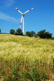 Wind turbine and golden field Royalty Free Stock Photography
