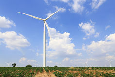 Wind turbine on the green grass over the blue clouded sky Stock Photography