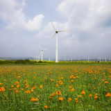 Wind turbine on the green grass over the clouded Stock Photography