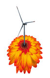 Wind turbine like a flower isolated on white Royalty Free Stock Photography