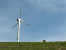 Wind turbine in a meadow stock images
