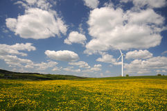 Wind turbine on a meadow Royalty Free Stock Photography
