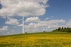 Wind turbine on a medow Stock Photos