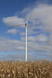 Wind turbine. In the middle of a field of wheat Stock Image