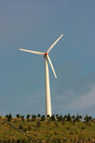 Wind turbine in a park with blue sky Royalty Free Stock Photos