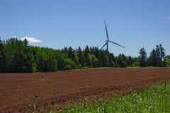 WInd turbine in PEI Stock Photo