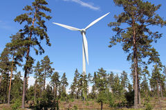 Wind Turbine in Pine Forest Royalty Free Stock Photos