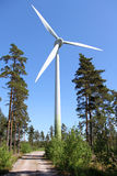 Wind Turbine in Pine Forest Stock Image