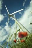 Wind Turbine in a Poppy Field stock images