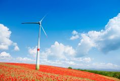 Wind turbine in poppy flowers field Stock Photo