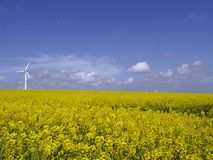 Wind turbine on field. A single windturbine in a field and a very blue sky stock images