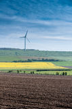 Wind turbine. Rapeseed field with wind turbine Royalty Free Stock Images