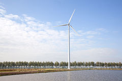 Wind turbine and row of trees Royalty Free Stock Image