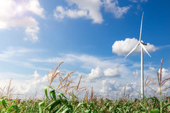 Wind Turbine with Sunlight Stock Photo