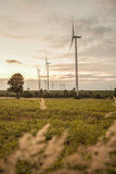 Wind turbine in sunset Stock Images