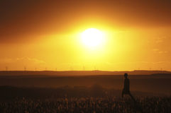 Wind Turbine Sunset. Wind turbines spin, creating clean, renewable energy on a 100 plus degree day on the Colorado prairie Stock Image