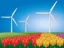 Wind turbine on tulip field Royalty Free Stock Image