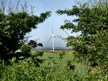 Wind turbine viewed through trees Stock Photography