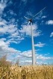 Wind turbine. A wind turbine in a wheat crop Royalty Free Stock Photos