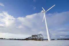 Wind turbine and windy trees Stock Image