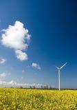Wind turbine, yellow field. stock images