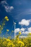 Wind turbine, yellow field. royalty free stock photos