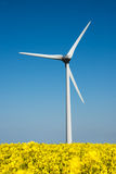 Wind turbine in a yellow flower field Royalty Free Stock Photos